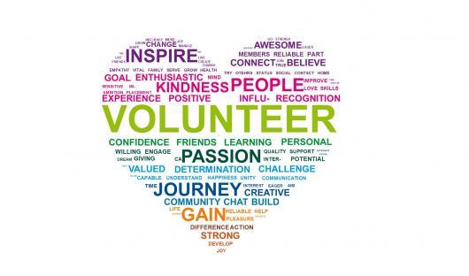 Image result for I am a volunteer